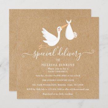 A Special Delivery Stork Baby Shower/sprinkle
