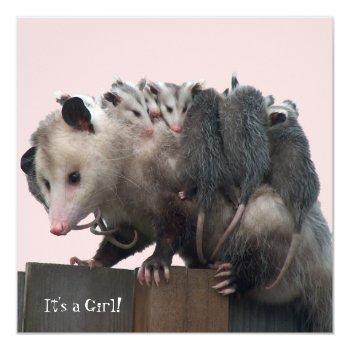 Mama Possum Humorous Baby Shower Invitation