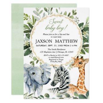 Safari Sip And See, Meet Baby Boy Jungle Theme Invitation