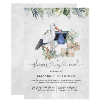 Stork Delivery   Virtual Baby Shower By Mail Invitation